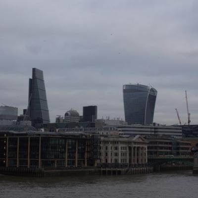 Inglaterra 2015 - 25 de enero London (2)